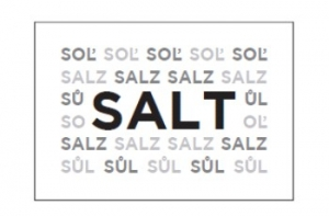 SALT IN PORTIONS